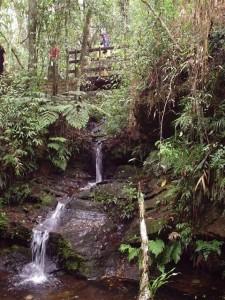 Cachoeira do Leão