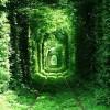 tunel-amor-290x330