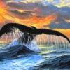 Cusumano_Phil_14_Sunset Whale Tail