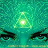 pineal 1
