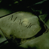 Morris-magic-stone-D0918_06