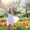 spring-2298285_960_720