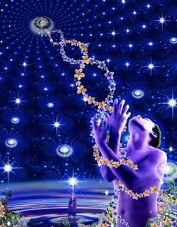 Higher Dimensional DNA