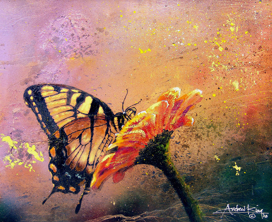 butterfly-andrew-king