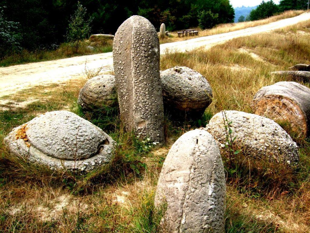 pedras-que-crescem_capa
