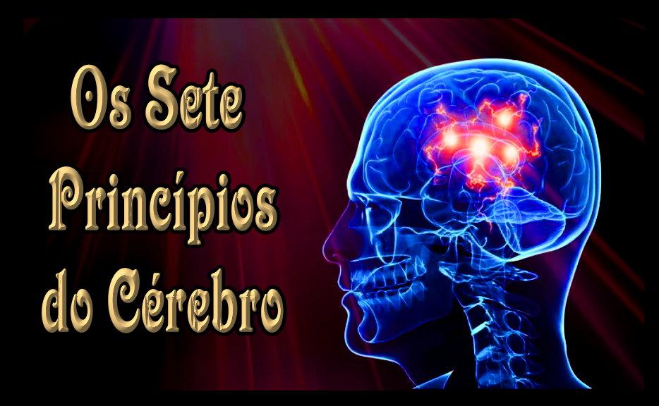 seven brain