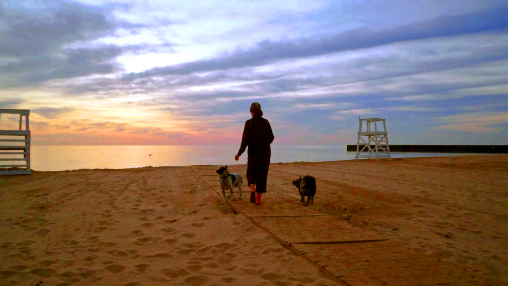 woman-walking-dog-on-beach-at-sunrise-two-dogs-on-walk-on-beach-adult-woman-and-dogs-are-going-to-sea-at-sunrise-woman-walking-dogs-on-seashore-at-sunrise_reluxlowg_thumbnail-full01
