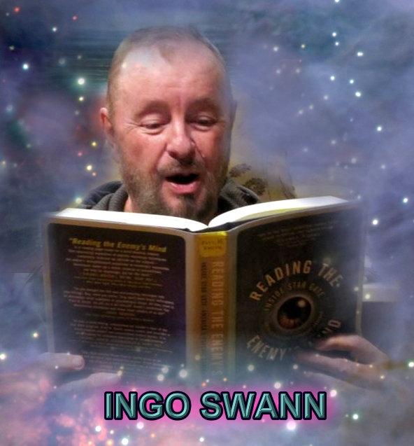 ingo sw