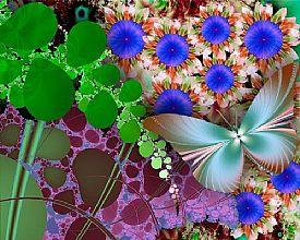 Butterfly_275_275[1]