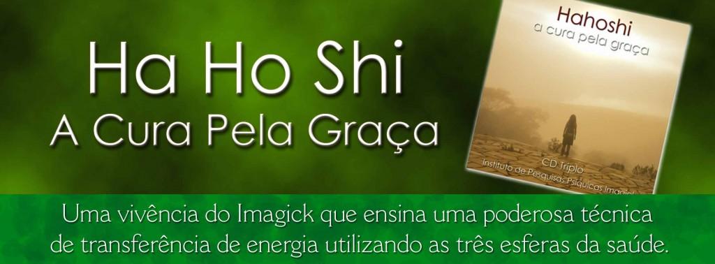 hahoshi-prop