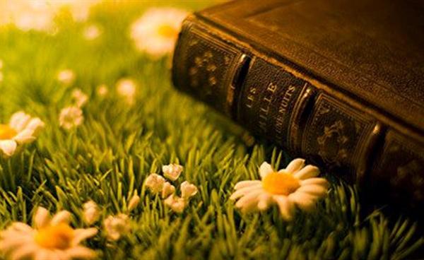 biblia-livro-mais-vendido-fe-em-jesus