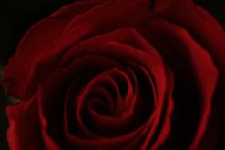 Captura de Tela 2015-02-02 às 14.48.43