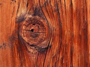 vista-wallpaper-knot-in-the-wood-300x225