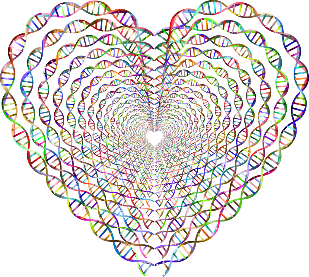Chromatic-DNA-Helix-Heart-Tunnel-No-Background