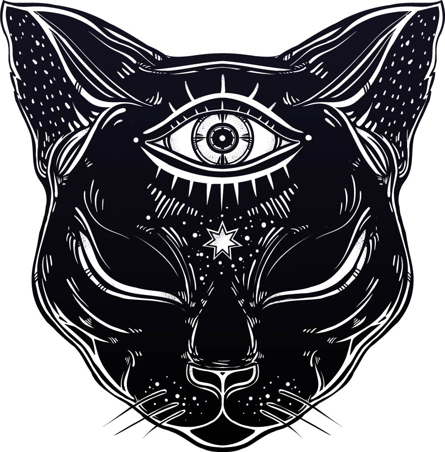 cat psychic shirt preview